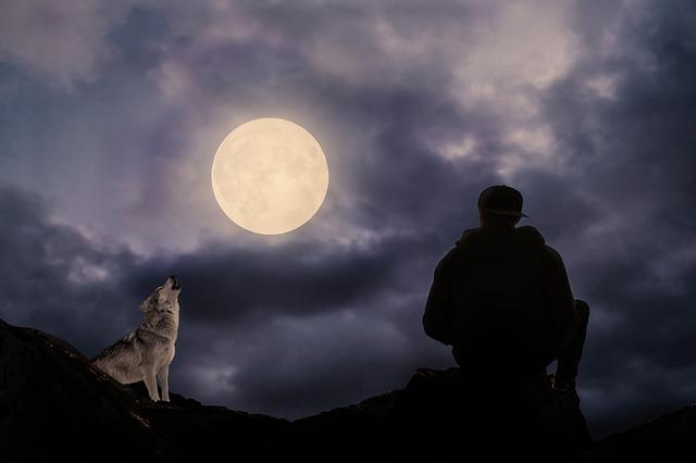 alessandro poletti notte lupo luna piena ragazzo lunatico